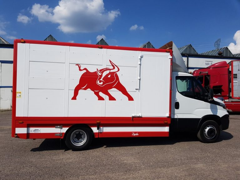 #11 Iveco Daily 70C17